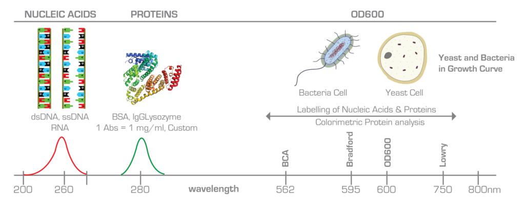 Nd-2800-od Nano Dot Nucleic Acid Analyzer